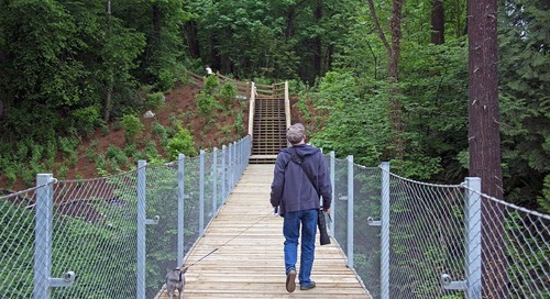 Keeping an eagle eye on sustainable bridge design
