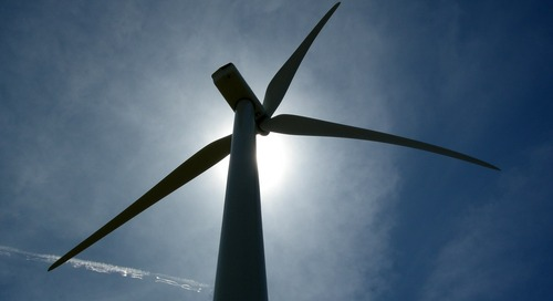 Biologist's goal: wind turbines that kill fewer bats and birds