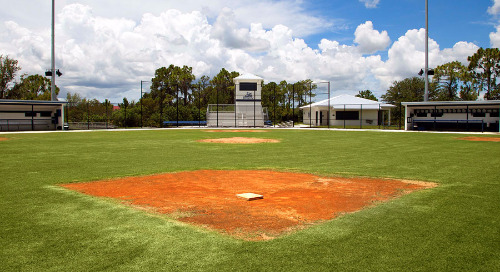 The great debate: Synthetic or natural turf