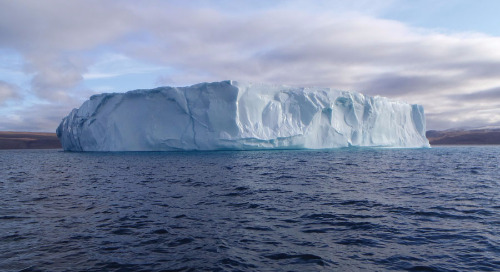 No evidence of publication bias in climate change science