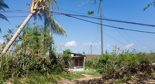 Can Caribbean islands modernize their way to affordable, resilient energy grids?