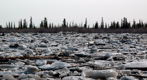 Emerging climate change issues and challenges for water systems in the Arctic
