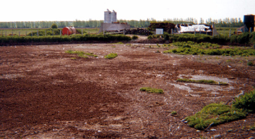 Sewage Composting in Iqualit - Black Gold