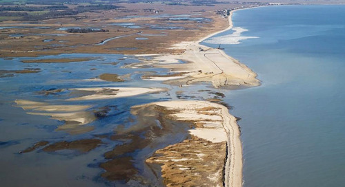 Living shorelines: Recovery, restoration, and resiliency after Hurricane Sandy