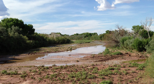 Drought defense: 3 steps to effective water management in extreme climates