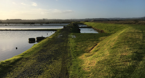 Pukekohe wastewater discharge consenting