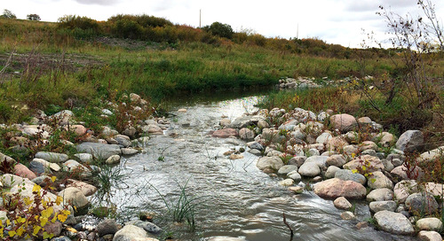 Nature is a patient, not a machine: Looking at stream restoration through the medical lens