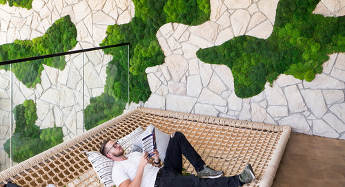Biophilic design: What is it? Why it matters? And how do we use it?
