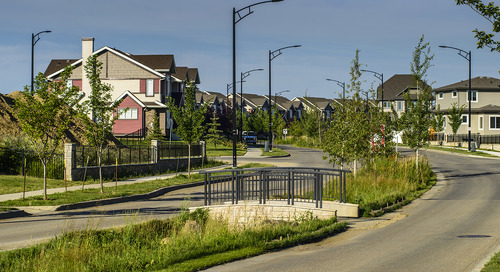 What are the best Low Impact Development and Green Infrastructure techniques for roads?