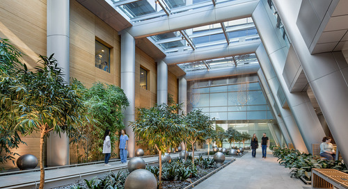 From the Design Quarterly: A healthy future for mass timber in medical facilities
