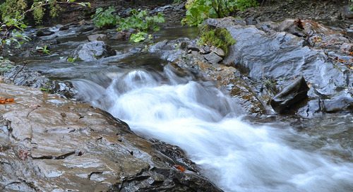 Stantec Celebrates World Water Day