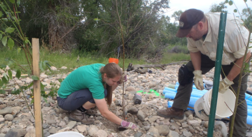 Hear from our experts at the Rocky Mountain Stream Restoration Conference