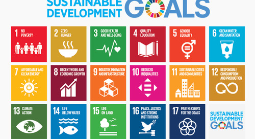 Sustainable Development Goals: 4 Steps to take action on the 2030 Agenda