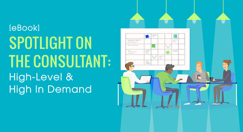 [eBook] Spotlight On The Consultant: High-Level & High In Demand