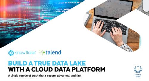 Build a True Data Lake with a Cloud Data Platform
