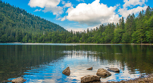 Germany: Black Forest Adventure - 9 Days