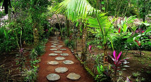 Costa Rican Adventure - 8 Days
