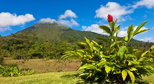 Costa Rican Tropics - 8 Days