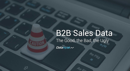 The Good, the Bad and the Ugly of B2B Sales Data