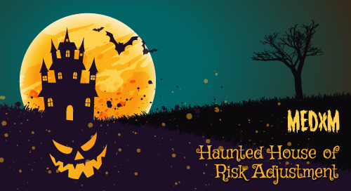 Haunted House of Risk Adjustment E-Book