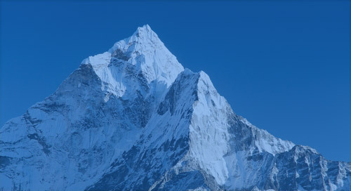 Randstad Sourceright receives top RPO capability positioning from Everest Group