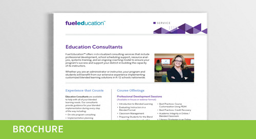 Consultant Service Flyer