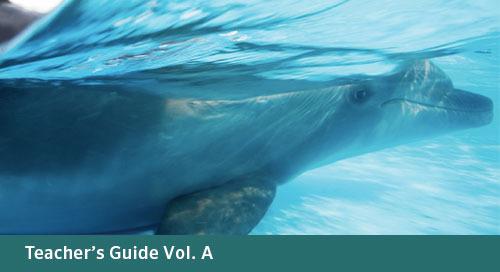 FLORIDA Algebra 1 Teacher's Guide Vol. A (Bid# 3719 & 3721, ISBN 978-1-60153-542-9)