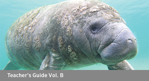 FLORIDA Algebra 2 Teacher's Guide Vol. B