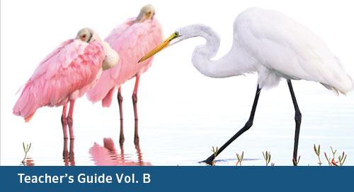 FLORIDA Math 7 Teacher's Guide Vol. B (Bid# 3715, ISBN 978-1-60153-539-9)