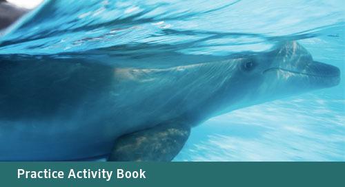 FLORIDA Algebra 1 Practice Activity Book