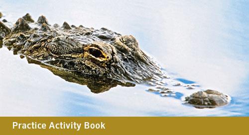 FLORIDA Pre-Algebra Practice Activity Book Continued (Bid# 3717, ISBN 978-1-60153-550-4)