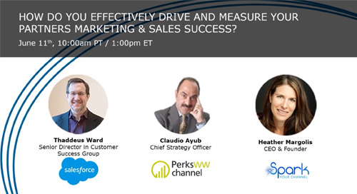 How Do you Effectively Drive and Measure Your Partners Marketing & Sales Success?