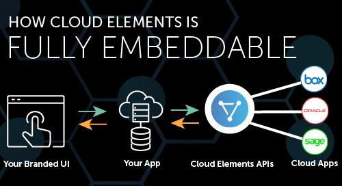 Embeddable APIs for Any Platform Provider