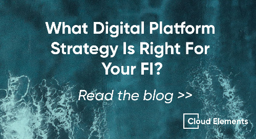 Providing a Digital Platform: Which Strategy Is Best For Your FI?