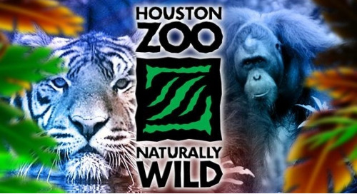 RECORDED WEBINAR: Optimizing Fundraising Activity with Advanced Analytics Featuring the Houston Zoo