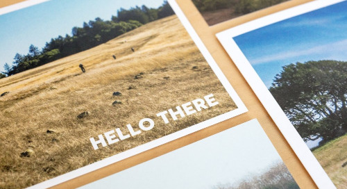 SONOMA LAND TRUST: Discovering Full Potential with eTapestry
