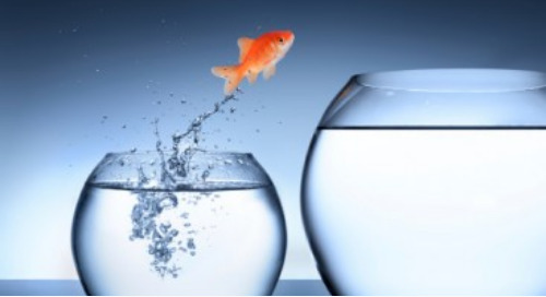 3 Ways to Embrace Change and Shake the Status Quo at Your Organization