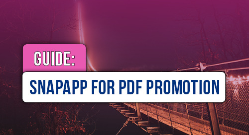 SnapApp for PDF Promotion Checklist