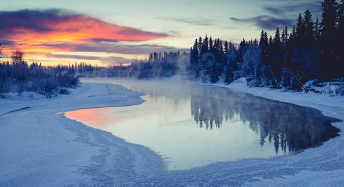 First Time Cruiser Rebooks His Alaskan Honeymoon on the Grand Princess