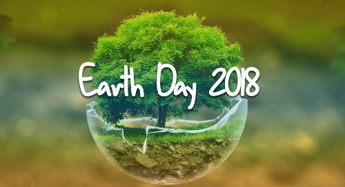 5 Easy Ways to Participate in Earth Day