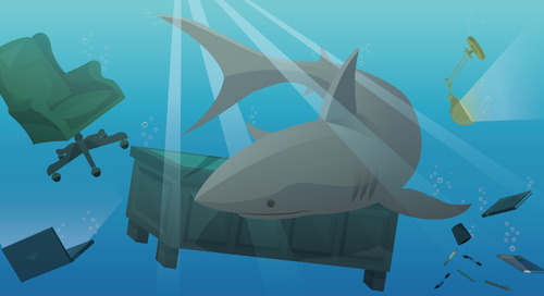 Scale Your Business to Swim with the Sharks