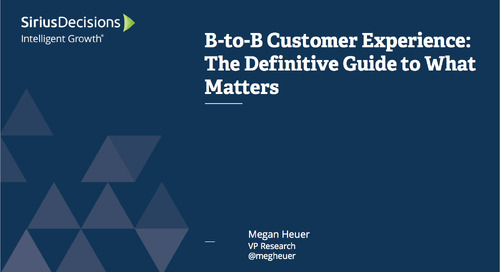 B-to-B Customer Experience: The Definitive Guide to What Matters Webcast Replay