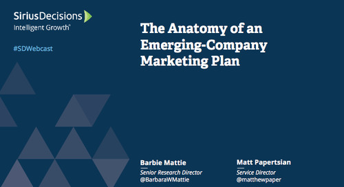 The Anatomy of an Emerging Company Marketing Plan Webcast Replay