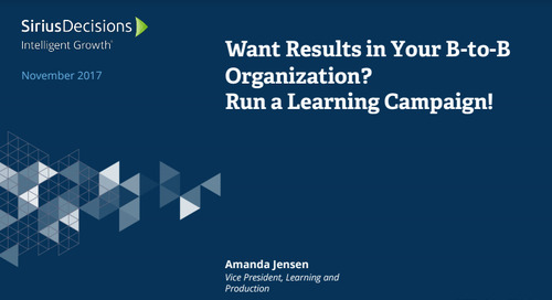 Want Results in Your B-to-B Marketing Organization? Run a Learning Campaign