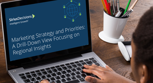 Marketing Strategy and Priorities: A Drill-Down View Focusing on Regional Insights