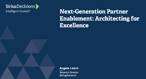Next Generation of Partner Enablement: Building Fluency in B-to-B Channels