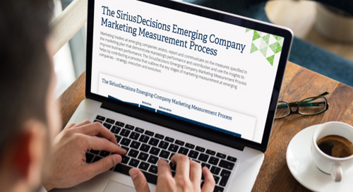 The SiriusDecisions Emerging Company Marketing Measurement Process