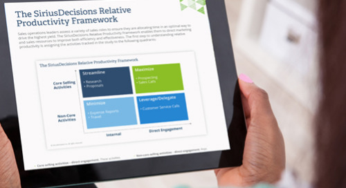 The SiriusDecisions Relative Productivity Framework