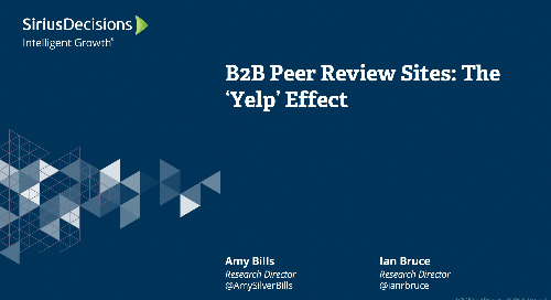 "The ""Yelp"" Effect: What to Know about B2B Review Sites Webcast Replay"