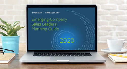 Emerging-Company Sales Leader Planning Guide 2020